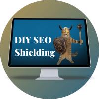DIY SEO SHielding