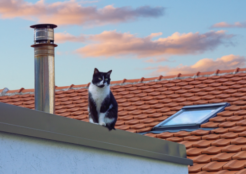 SEO for Roof companies