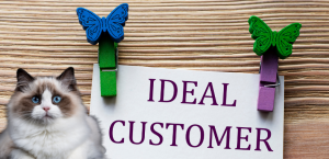 Ideal customer or clients and seo